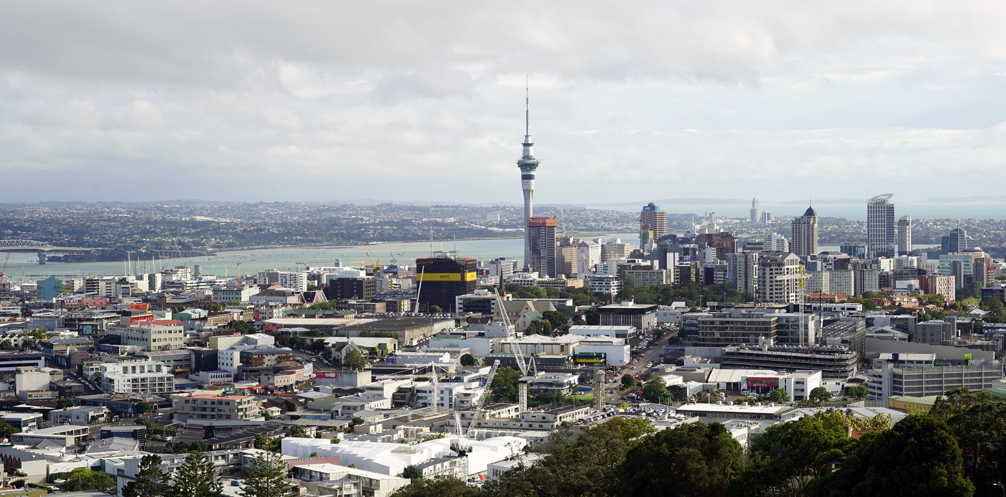 Facility operations limited building consultancy for Auckland landscaping services ltd